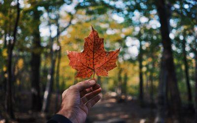 Mental Health Initiatives in Canada